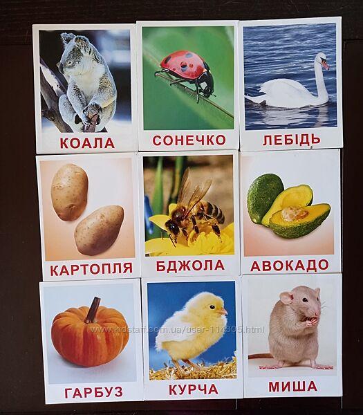 Картки Домана Вундеркінд з пелюшок