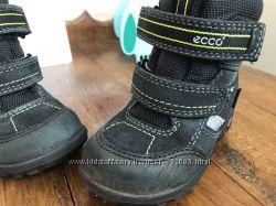 Зимние ботинки ecco 21 размер