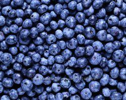 Черника сушеная - ягоды - Карпаты