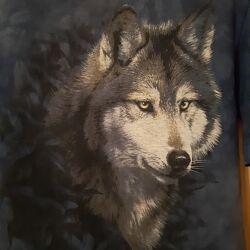 Детская футболка the Mountain