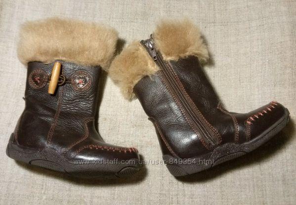 Демисезонные кожаные сапожки Hush Puppies для девочки 14, 5 по стельке