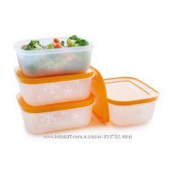Набор Лотков для замораживания продуктов 450 мл. 4 шт. Tupperware