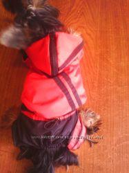 спортивный костюм красно-черный