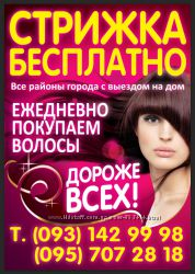 Продать волосы в Харькове Дорого Куплю волосы Харьков