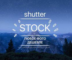 Фото из фотобанка Shutterstock