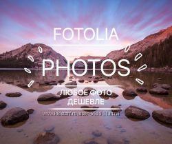 Фото из фотобанка Fotolia