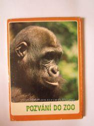 Винтажные открытки Набор с животными