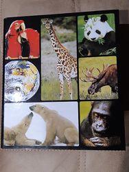 Шикарная энциклопедия  мир дикой природы
