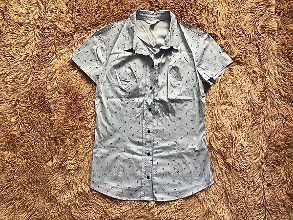 новая голубая блузка Ostin